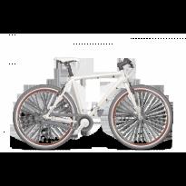 Bicicleta CROSS Spria